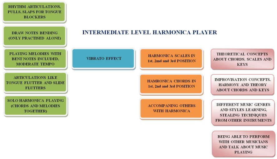 Intermediate level harmonica players skills